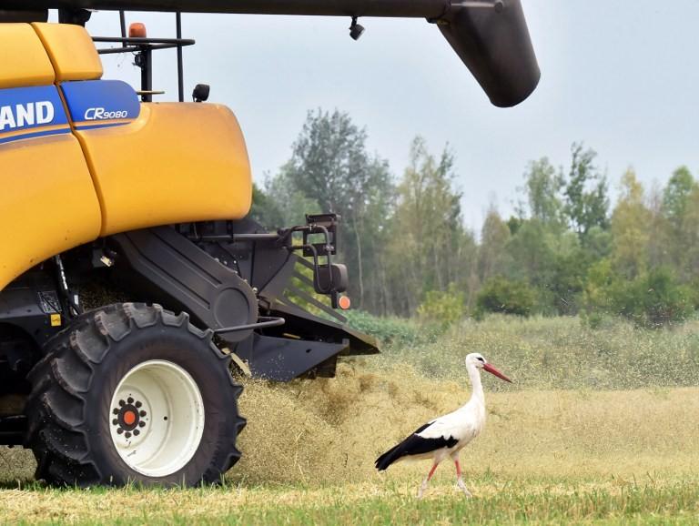xinhua ukraine eu agricultural trade up 22 in the first quarter