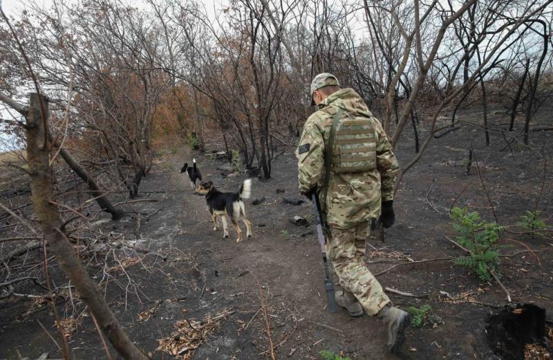 ukrinform ukraine us agree on medical rehabilitation of people affected by post war syndrome