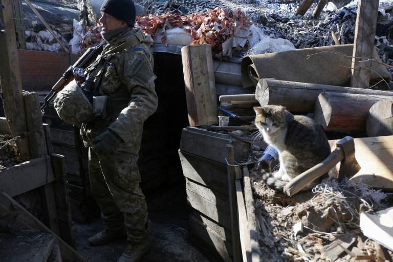 UkrInform: Ukraine to participate in NATO military exercises